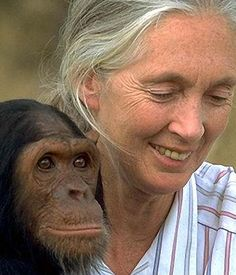 Jane Goodall   (London, 1934) British Zoologist and anthropologist. Jane Goodall was born in London on April 3, 1934 , and grew up in the ...