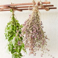 Preserve herbs by hanging them in bundles upside down in a warm, dry area with good air circulation for about a week. Keep bundles away from direct sun to avoid bleaching. This DIY drying rack makes the task easy!