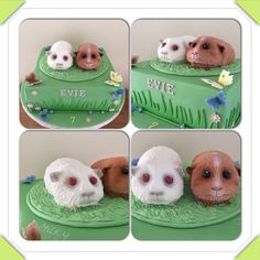 Guinea pig cake by Zoe Smith Bluebird-cakes / Wintersgate Bakery