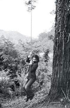 laurel-canyon-zappa at home.