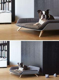 Letto dayBed una cama moderna para perros con un mucho estilo - FRACTAL estudio + arquitectura