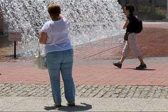 Mais de um milhão de portugueses sofrem de obesidade e cerca de metade da população adulta tem excesso de peso, lembra a Ordem dos Nutricionistas, que reclama mais profissionais nos centros de saúde.