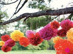 Colourful mexican style wedding pom poms