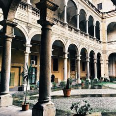 There is more to #Palermo than just the famous food/open air markets... #Sicily