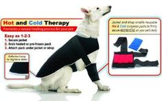 Warm Whiskers Pet Therapy Jacket Set Size: Extra Large * For more information, visit image link. (This is an affiliate link and I receive a commission for the sales) Animal Shelter, Animal Rescue, Dog Gadgets, Baby Massage, Cat Design, Puppy Love, Dog Cat, Pet Cats, Fur Babies
