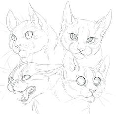 Gatos para dibujar 9 Animal Sketches, Art Drawings Sketches, Animal Drawings, Drawing Animals, Drawings Of Animals, Pencil Drawings, Cat Reference, Art Reference Poses, Design Reference