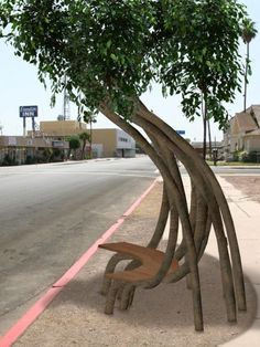 Bus stop... Made by living trees!