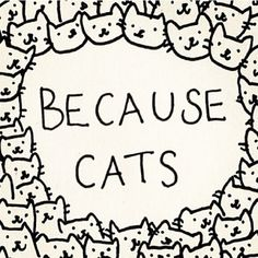 Because cats. i don't know what board to put this under. Always blame the poor kitty cats. Crazy Cat Lady, Crazy Cats, I Love Cats, Cute Cats, Cat Art Print, Cat Quotes, Cat Sayings, Animal Quotes, Wisdom Quotes