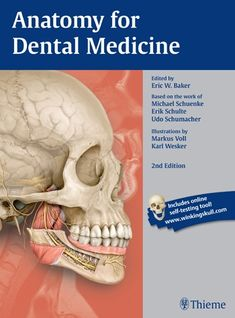 Buy Anatomy for Dental Medicine, Latin Nomenclature by Eric Baker, Erik Schulte, Michael Schuenke and Read this Book on Kobo's Free Apps. Discover Kobo's Vast Collection of Ebooks and Audiobooks Today - Over 4 Million Titles! Online Self, Free Dental, Medicine Book, Body Anatomy, Latin Words, Fiction And Nonfiction, Science Books, Head And Neck, Dentistry