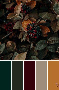 Color Schemes Colour Palettes, Fall Color Palette, Colour Pallette, Vintage Color Palettes, Fall Color Schemes, Colors Of Autumn, Vintage Colors, Orange Color Palettes, Christmas Colors Palette