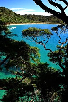 Excellent shot of the beautiful Abel Tasman National Park, New Zealand. Dream Vacations, Vacation Spots, Places To Travel, Places To See, Abel Tasman National Park, New Zealand Travel, Destinations, Beautiful Places In The World, Australia Travel