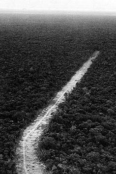 Transamazônica - Construção da rodovia Transamazônica (BR-230) na década de 70, rede rodoviária que, posteriormente, acabou abandonada
