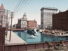 """mikasavela: """"(The Killer Whales of the) Erie Canal at Salina Street…"""