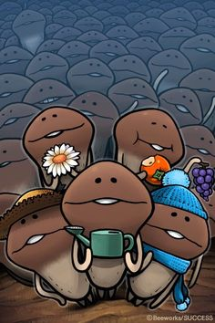 Nameko Season