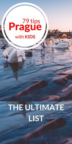 79 Things to Do with Your Kids in Prague – The Ultimate List. Check out these 79 absolutely awesome ideas that will provide a lot of fun and excitement both to you and your children! European Vacation, European Travel, Travel Europe, Travel With Kids, Family Travel, Family Trips, Prague Things To Do, Prague Winter, Vacation Trips