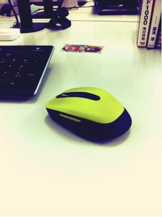 new mouse !