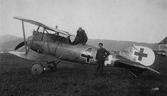 Deskau - Albatros D.V - Wikipedia, la enciclopedia libre