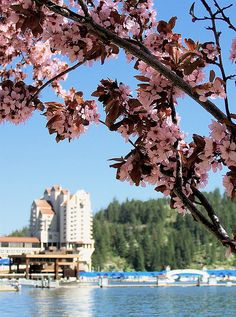 Spring is here! So many plans! Beautiful Places To Visit, Cool Places To Visit, Beautiful World, Places To Travel, Coeur D'alene Idaho, Great North, Spring Is Here, Road Trip Usa, Great Memories