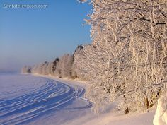 Winter in Lappland in Finnland.  Cabins and Activities in Saariselkä http://www.saariselka.com
