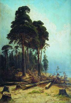 Сосновый лес 1883- 1894 235х161. 3. Иван Иванович Шишкин