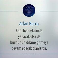 Aslan burcu What Is Your Horoscope, Thats Not My, Zodiac, Cards Against Humanity, Nirvana, 12 Zodiac Signs, Horoscope