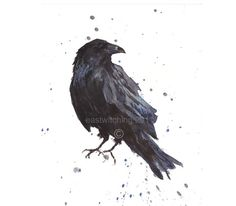 Watercolour RAVEN, raven, raven print, goth gift, For the lover of Poe £15.00