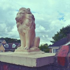 """""""Maybe it's perfectly possible to pull off 'proud' and 'neurotic' at the same time, said the lion. #statue #ornament #garden #decoration #decorative #porch #lion #lions #kitsch #photo #photos #photography #photooftheday"""" by @l.ric.h. #capture #pictures #pic #exposure #photos #snapshot #picture #composition #pics #moment #focus #all_shots #color #foto #photograph #fotografia #photographyeveryday #photoart #ig_shutterbugs #photogram #photodaily #instaphotography #photographylovers #grow…"""