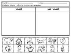 Spanish:Living and NonLiving. Seres vivos y no. by Mrs G Dual Language Spanish Lessons For Kids, Spanish Activities, Teaching Spanish, Petite Section, Science Classroom, Classroom Activities, Living And Nonliving, Kindergarten Units, Spanish Immersion