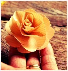 Tutorial on How to Make Wooden Roses Using Birch wood Shavings | Reduce. Reuse. Recycle. Replenish. Restore.