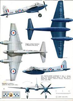 D.H. Hornet