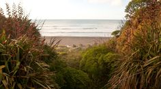 Check this blog to find service on wonderful #bed_and_breakfast hotel accommodation in #Taranaki!