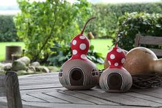 At the IPM in Hall 1 Stand E the Blu-Blumen nursery presents eight innovations from the field Easy Crafts, Diy And Crafts, Crafts For Kids, Arts And Crafts, Decorative Gourds, Hand Painted Gourds, Gourds Birdhouse, Gourd Art, Backyard Projects