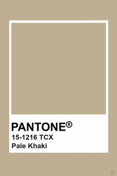 This color is a brown hue with a low chroma. It also has a high value because of this lower chroma. Pallette, Colour Pallete, Pantone Swatches, Color Swatches, Pantone Colour Palettes, Pantone Color, Paleta Pantone, Brown Pantone, Paint Color Schemes