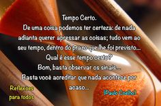REFLEXÕES PARA TODOS: TEMPO CERTO (Paulo Coelho)