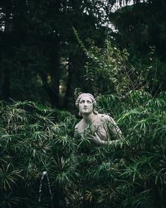 Most current Absolutely Free Sculpture Garden aesthetic Thoughts Statue landscapes are usually outdoor gardens devoted to sculpture demonstration, often a number of once and In Der Disco, Frühling Wallpaper, Statue Antique, Slytherin Aesthetic, Garden Statues, Garden Sculptures, Art Sculptures, Medusa, Images