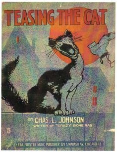 Teasing the Cat Sheet Music Cover