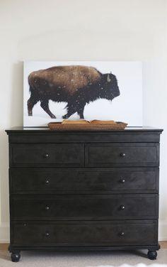 Yellowstone Bison Print - starting at $29