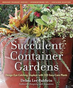 Succulent Container Gardens – The Perfect Mix of Stunning Photos and Useful Information