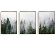 Forest Print Set of 3 Print Wall Prints Tree Print image 0 Wall Art Sets, Large Wall Art, Framed Wall Art, Canvas Wall Art, Science Illustration, Forest Landscape, Landscape Art, Wall Art Prints, Fine Art Prints