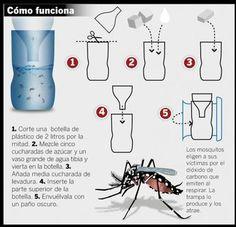 Se trata de una trampa que se construye con botellas de plástico descartables. Ante la aparición de casos sospechosos de dengue y el costo y escasez de los insecticidas, comenzó a difundirse a trav…