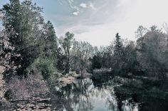 Down the winding river  Katja Wulfers©