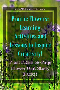 Prairie Flowers: Learning Activities and Lessons to Inspire Creativity! Looking to spruce up your homeschool with an awesome unit study on prairie flowers? This unit study will keep the kiddos engaged! Hands On Activities, Learning Activities, Kids Learning, Homeschool Curriculum Reviews, Homeschooling, Inspirational Articles, Nature Study, Diaries, Walks