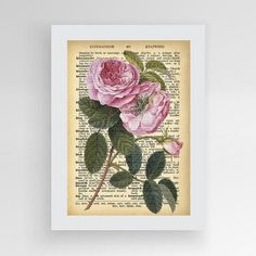 Book print Rose print Rose Dictionary Print by photoplasticon