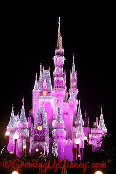 I love Cinderella Castle Dream Lights!
