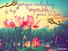 Mateo 19:26 Y mirándolos Jesús, les dijo: Para los hombres esto es imposible; mas para Dios todo es posible.♔