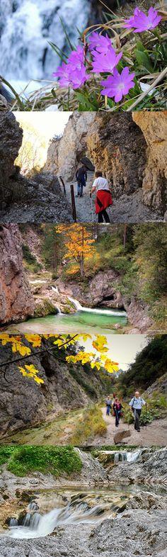 Wandern Ötschergräben Places To Travel, Golf Courses, Wanderlust, Mountains, Nature, Road Trip Destinations, Bavaria, Destinations, Germany