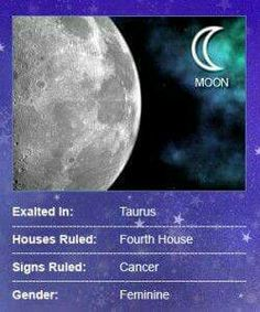 The Moon: Ruler of the Emotions Since the Moon is the closest 'Planet' to Earth, this satellite literally zips around the zodiac, completing its. Moon Astrology, Astrology Numerology, Astrology Zodiac, Aries, Cancer Leo Cusp, Sidereal Astrology, Moon Facts, Zodiac City, Astrology
