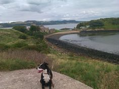 """Inchclom, Scotland from the Scottish Gaelic """"Innis Choluim"""", meaning Columba's Island) is an island in the Firth of Forth in Scotland."""