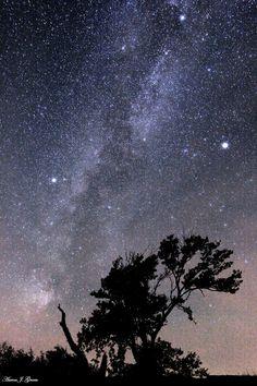 美しい星空です。