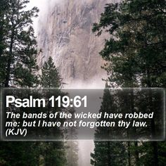 Psalm 119:61 The bands of the wicked have robbed me: but I have not forgotten thy law. (KJV)  #Salvation #Relationships #MotivationalMeme #DailyBibleVerse http://www.bible-sms.com/